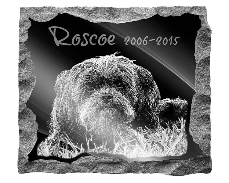 Affenpinscher Dog Memorial. Image and inscription etched on polished black granite with a natural outer edge chisel finish. Plaque size: 16