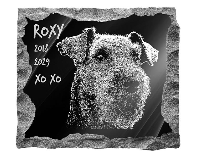 Airedale Terrier Dog Memorial. Image and inscription etched on polished black granite with a natural outer edge chisel finish. Plaque size: 16