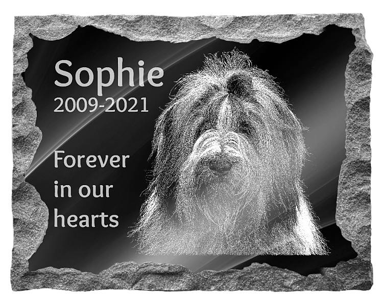 Bearded Collie Dog Memorial. Image and inscription etched on polished black granite with a natural outer edge chisel finish. Plaque size: 20
