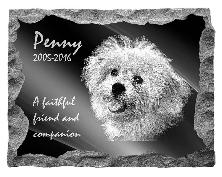 Bichon Frise Dog Memorial. Image and inscription etched on polished black granite with a natural outer edge chisel finish. Plaque size: 20