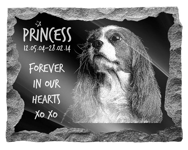 Cavalier King Charles Dog Memorial. Image and inscription etched on polished black granite with a natural outer edge chisel finish. Plaque size: 20