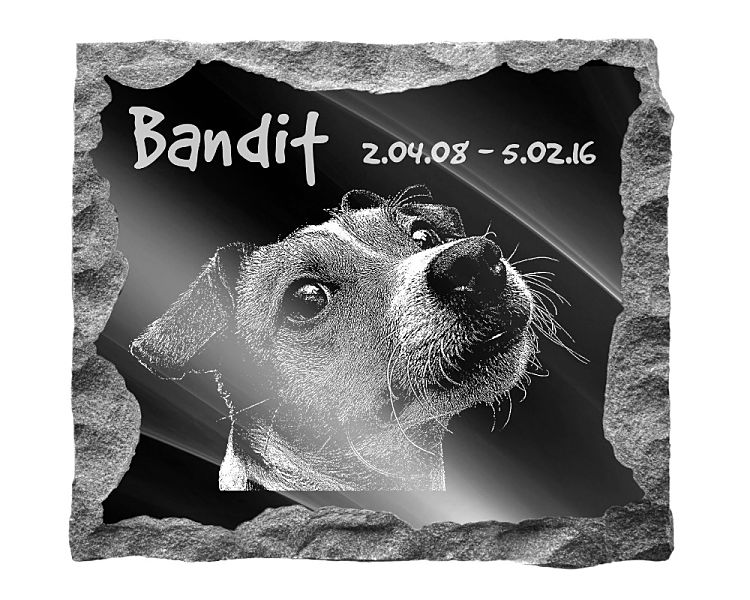 Jack Russell Terrier Dog Memorial. Image and inscription etched on polished black granite with a natural outer edge chisel finish. Plaque size: 16
