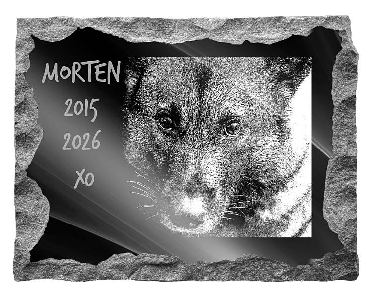 Norwegian Elkhound Dog Memorial. Image and inscription etched on polished black granite with a natural outer edge chisel finish. Plaque size: 20