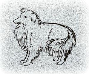 Dog Pet Memorial Photograph on Granite