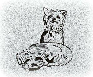 Terrier Dogs Pet Memorial Image