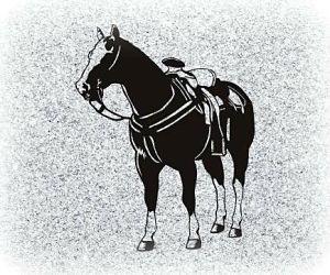 Horse Pet Memorial Image
