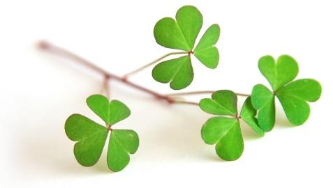 Irish Proverbs and Irish Blessings fro headstones