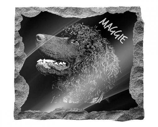 Irish Water Spaniel Dog Memorial headstones