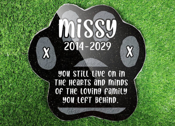 Feline Friend Memorial Ideas with kitty remembrance quotes