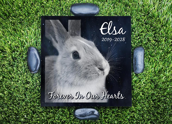Personalized Pet Memorials for Outdoor use